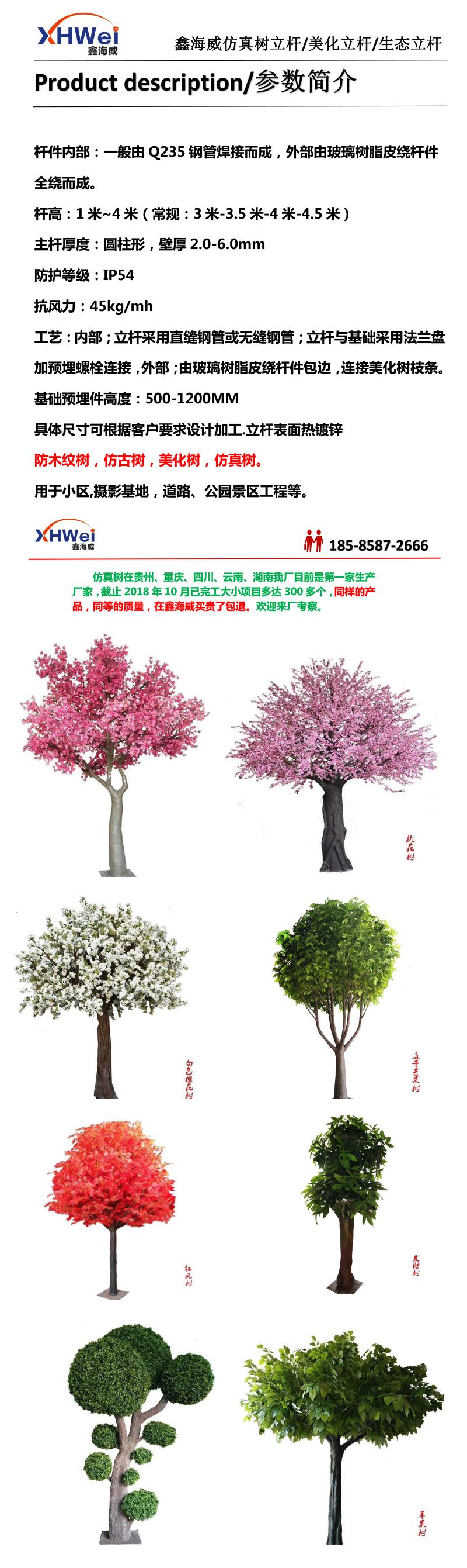 造景树-1.jpg
